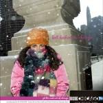 web_amex_snow